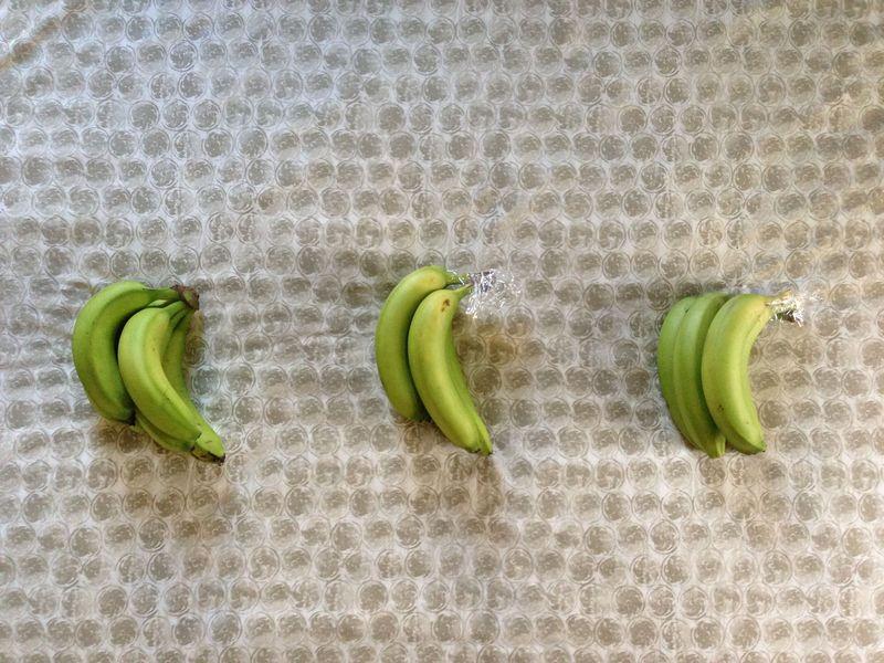 e200baf7 2329 4505 ab51 d2b58a7f9dc4 IMG 8246 - Aprenda agora como impedir que as bananas amadureçam tão rapidamente