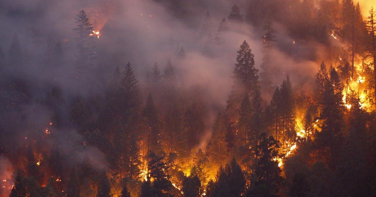 1538505791 f72ee07457d949ffef37a941a87bcdd4 1200x630 - Pai exagera em 'chá de revelação' e causa incêndio florestal gigantesco nos EUA