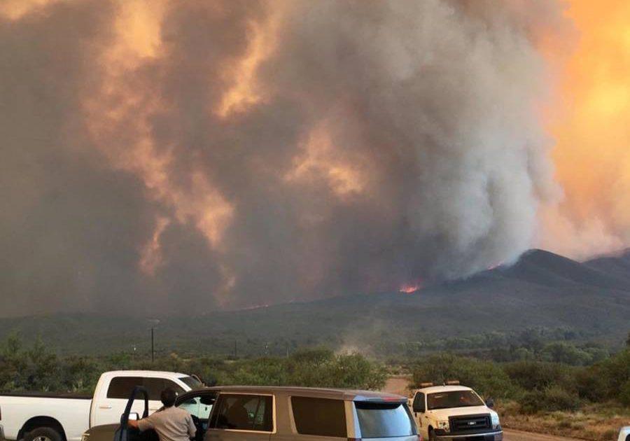 arizona wildfire 900x630 - Pai exagera em 'chá de revelação' e causa incêndio florestal gigantesco nos EUA