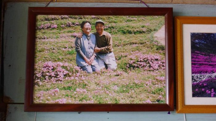 husband plants flowers blind wife kuroki shintomi 8 700x394 1 - Marido passou anos plantando milhares de flores para sua esposa cega