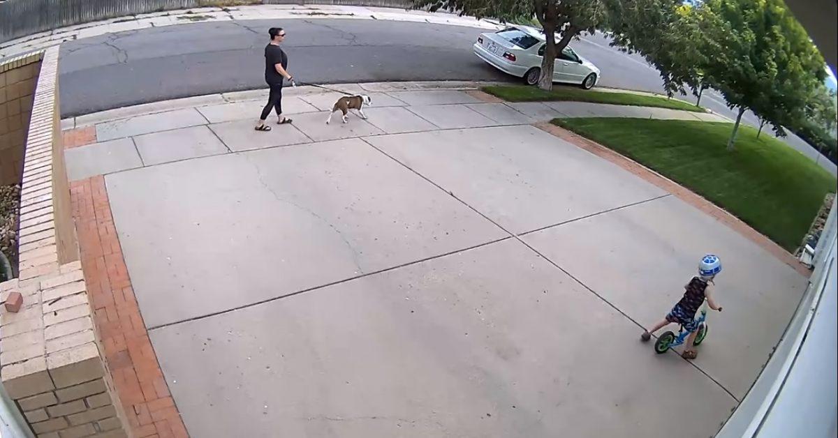 vi scaled - Todo dia um menino andava de bicicleta em frente a sua garagem e fazia o alarme de segurança tocar, ele então tomou uma atitude inusitada.
