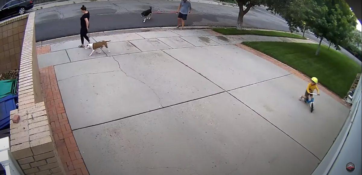 vi1 scaled - Todo dia um menino andava de bicicleta em frente a sua garagem e fazia o alarme de segurança tocar, ele então tomou uma atitude inusitada.