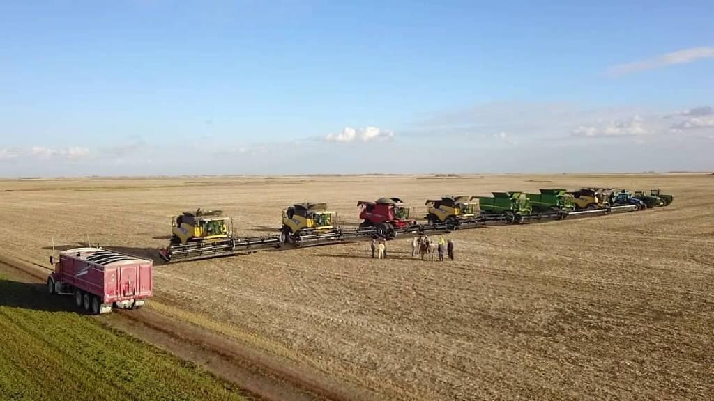 farmers 1024x576 1 - Agricultores se unem para fazer a colheita do vizinho que estava cuidando da filha hospitalizada